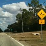 The first time I saw a sign like this (primera vez que veo una senial como esta)